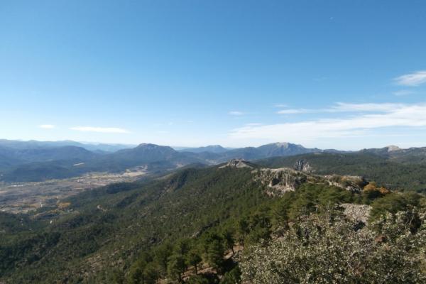 Aventura Pino Gordo del Toril y Pico Gallinero | Aventuras con Botas